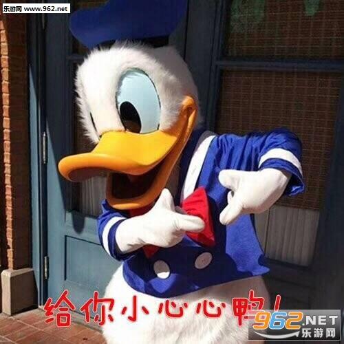 冲鸭要抱抱鸭唐老鸭老公带字表情坏图片图片的图库坏表情包q你图片