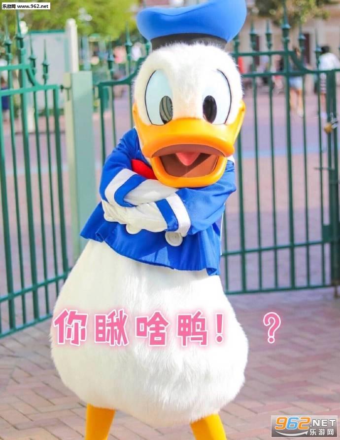 冲鸭要抱抱鸭唐老鸭表情包带字图片图片