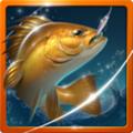 钓鱼胡克2.0.5破解版