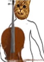 沙雕猫拉乐器动态表情包图片