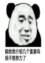 给我努力几个表情我不想看病了熊猫头富婆介绍的搞笑图片给猪图片