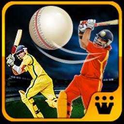 World T20 Cricket Champs 2018安卓版v1.8