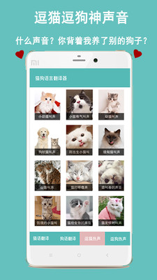 猫狗语言交流器安卓版v1.0.4截图2