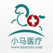 小马医疗app