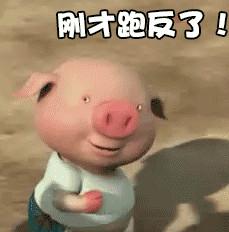 小猪跑步表情包gif图片