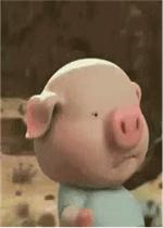 抖音小猪跑步动图图片|抖音小猪表情包图片下载-乐游图片