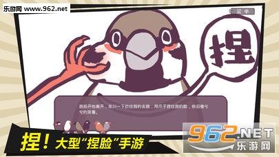 咕啾文鸟恋爱物语ios苹果版v1.0.0截图4