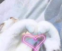 《猫爪爱心图片表情包》是一款超q萌超可爱的猫爪撒爱心表情包图片,两图片