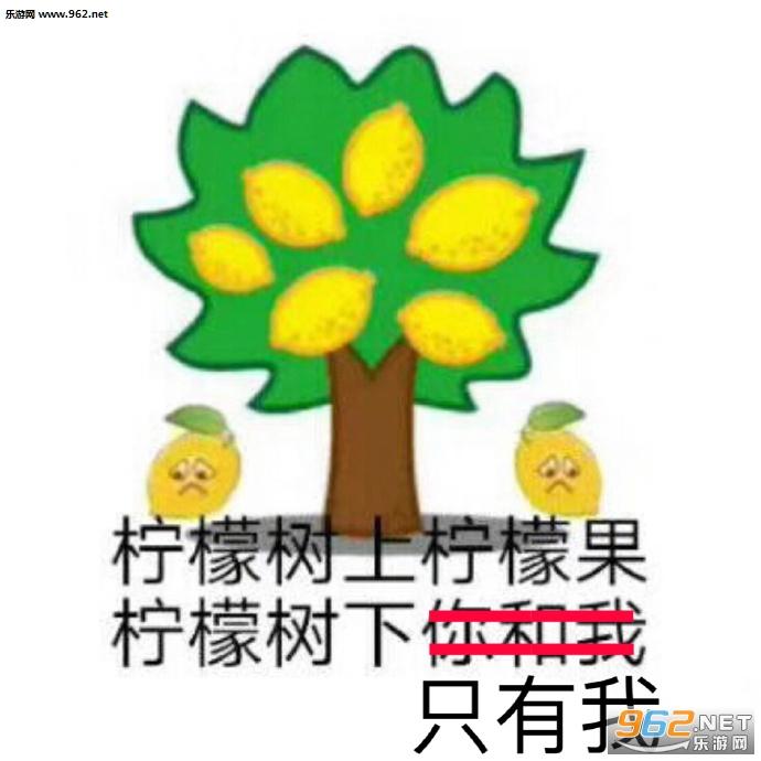 柠檬树上只有果柠檬树下表情我表情精柠檬|你柠檬包睡觉搂GIF图片