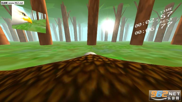 Eagle Ride游戏v1.0_截图0