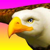 Eagle Ride游戏