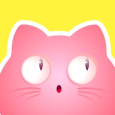 喵喵社区app