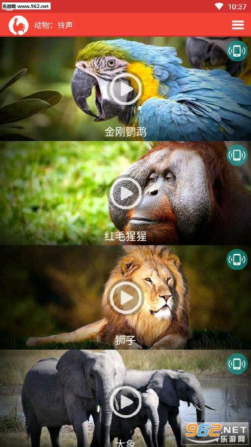 各种动物的叫声大全试听下载 手机动物铃声大全试听