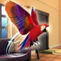 鹦鹉模拟器官方版 v1.0.1