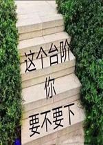 这个台阶你要不要下表情包图片