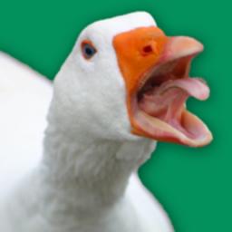 街头捣蛋鹅模拟器安卓版v1.0.3