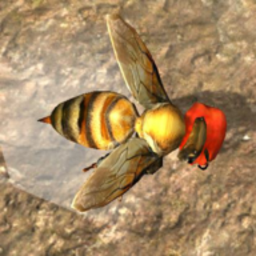 蜜蜂生存模拟器手游v1.0