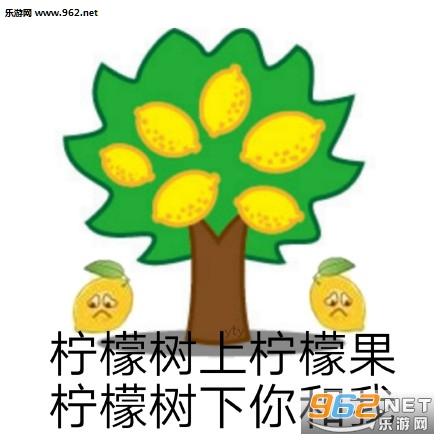 柠檬酸的系列表情包图片