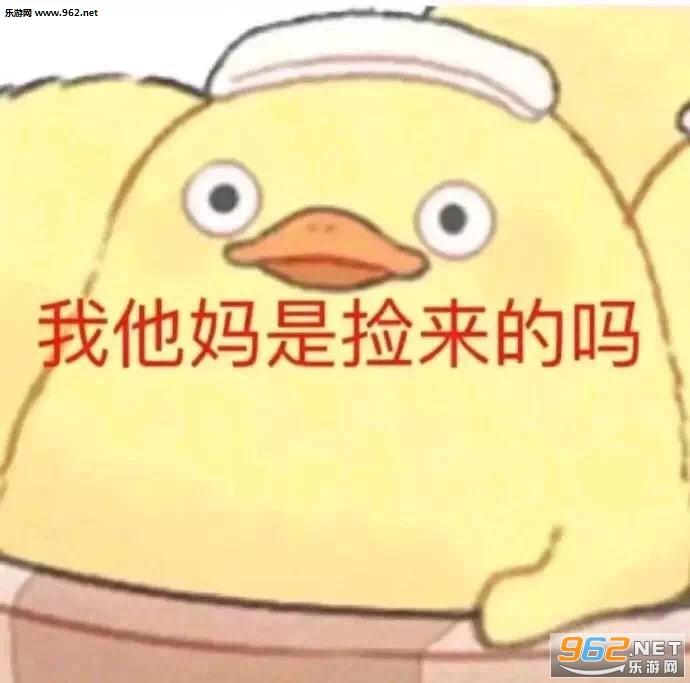 还是姐姐过年好微信哥哥v还是宝表情表情搞笑图片包王俊凯包图片