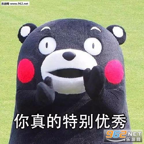 表情包的主人公是呆萌的熊本熊,可以用来安慰鼓励你的小伙伴,内容是不图片