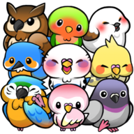 Bird Life安卓版v1.6.11