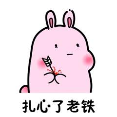 粉兔兔表情包