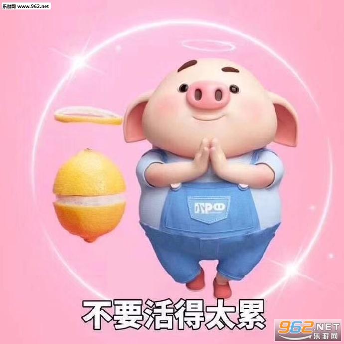 2019小猪表情包