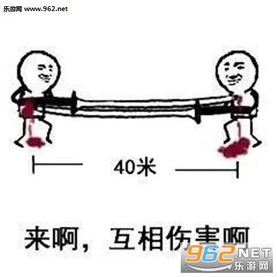 40米大刀表情包截图4