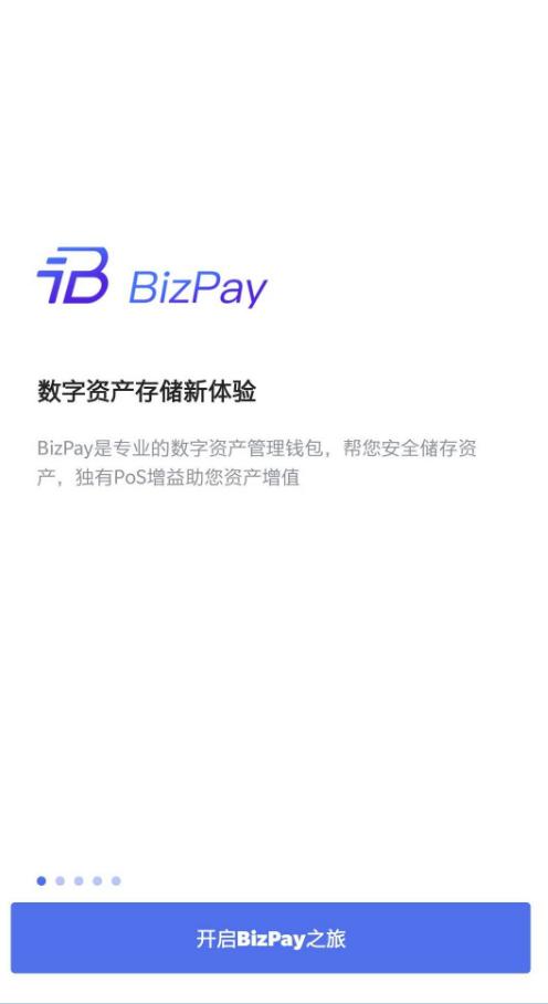 BizPay appv1.0.0_截图0