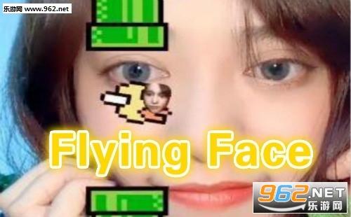 Flying Face安卓版