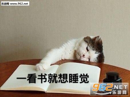 一看书就想睡觉图片表情包截图0