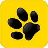 龙猫探员app