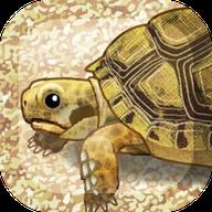 治愈系乌龟手游v1.2 手机版