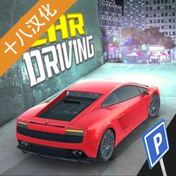 驾校模拟器游戏汉化版