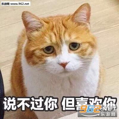 撩刘海表情包