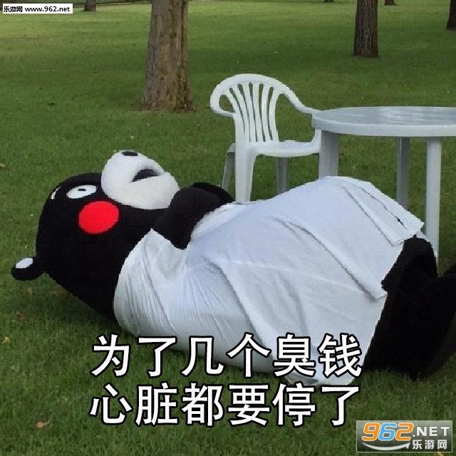 every struggle表情包