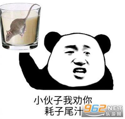耗子尾汁表情包图片(耗子喂汁)截图0