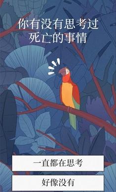 孤独的鸟儿破解版v2.3.7 免费版截图2