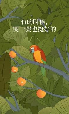孤独的鸟儿破解版v2.3.7 免费版截图0