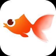 火鱼快讯赚钱app