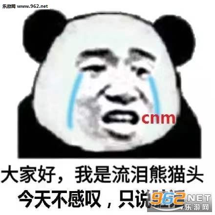 大家好我是流泪熊猫头表情包截图0