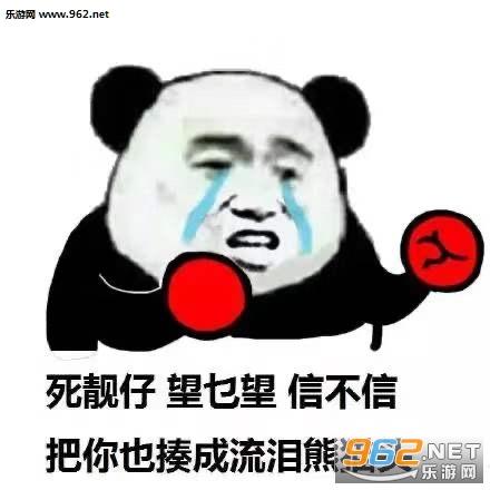 大家好我是流泪熊猫头表情包截图2