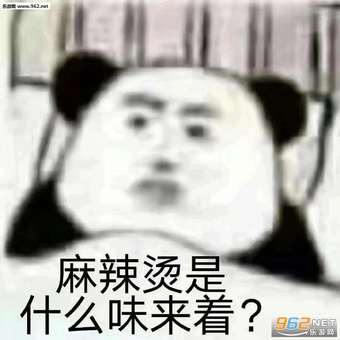 火锅是什么味来着表情包截图0