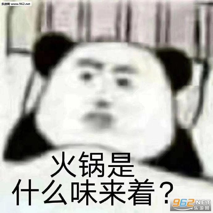 火锅是什么味来着表情包截图2
