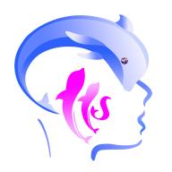 脑力中国app