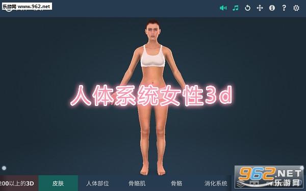 人体系统女性3d专业中文版
