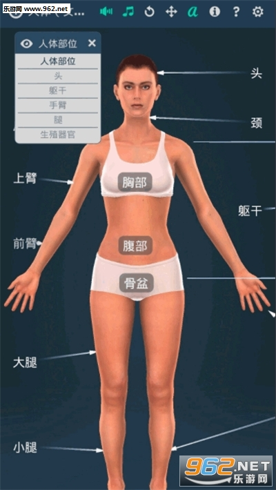 人体系统女性3d专业中文版v1.0(Human body female)截图1