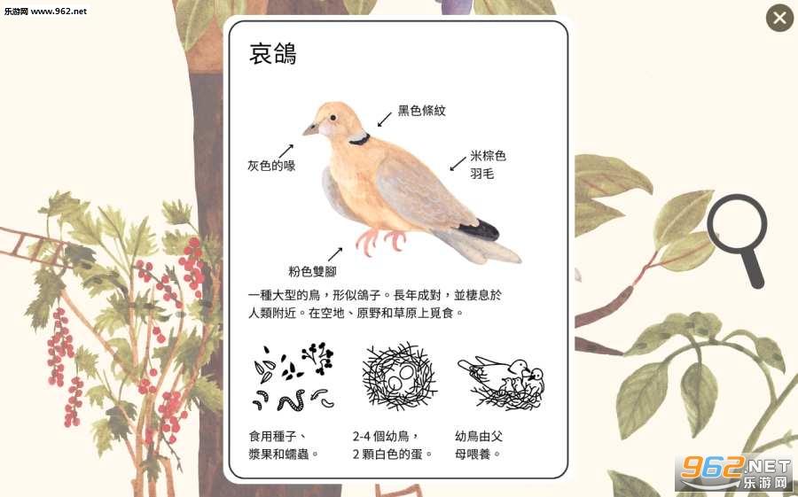 小棕鼠的自然生态百科安卓版v1.0.6免费版截图2