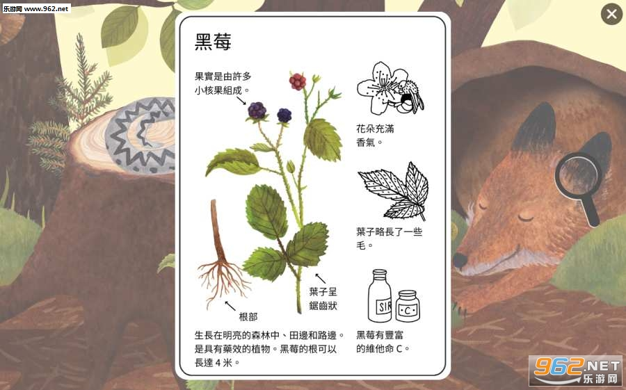 小棕鼠的自然生态百科安卓版v1.0.6免费版截图3