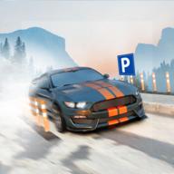 停车场模拟器2020破解版v1.1免费版